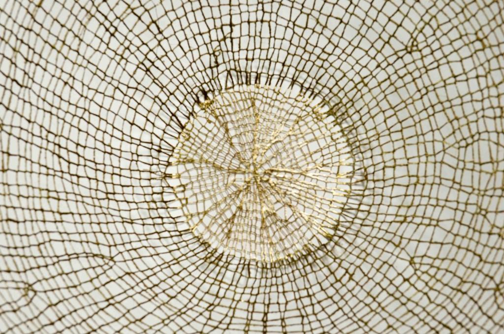 Detail 2015 90 (h) x 95 (d) cm Linen and cotton threads, pigment, epoxy Unique piece