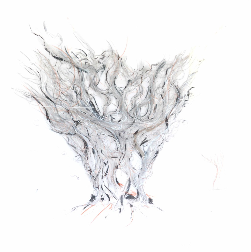 2011 Pencil, charcoal & gouache on paper H 89 x W 59 cm