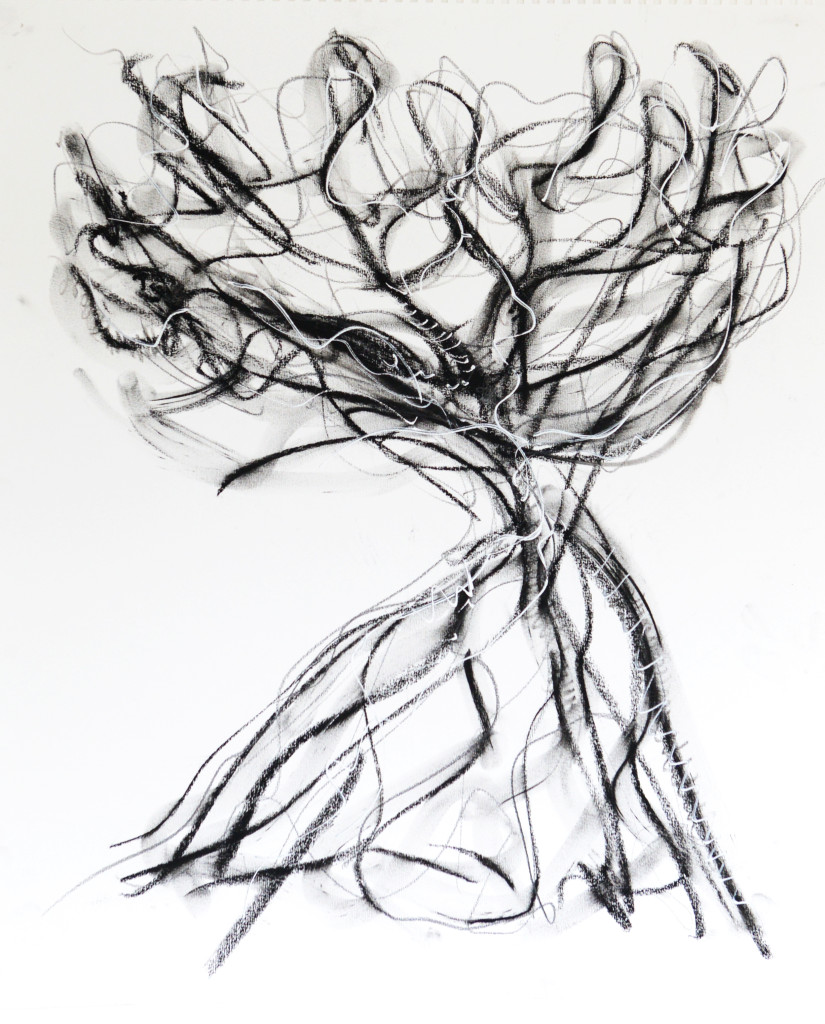 2012 Charcoal & ink on paper H 55 cm x W 46 cm