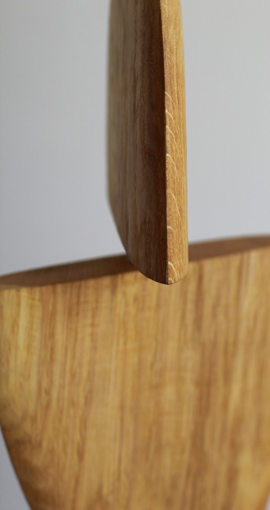 Detail 2017 Oak, leash magnets 31 x 19 x 3cm